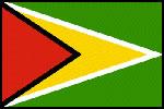圭亚那国旗